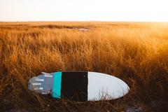 Surfboard lying in field of long grass at sunset, San Luis Obispo, California, - stock photo