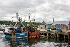 In the port of Cromarty, Black Isle - stock photo