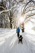 Rear view of man pulling toddler daughter on sledge in snow covered woods, Berg, Stock Photos