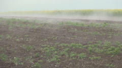 Farm field plowing in a cold morning cover by dense white fog moving fast. Stock Footage