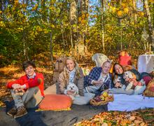 Portrait of mature couple with dogs, teenage and adult children relaxing on Stock Photos