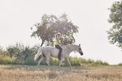 Woman riding grey horse in field - stock photo
