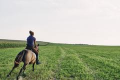 Rear view of woman galloping on bay horse in field - stock photo