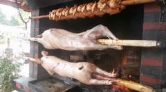 Roasting piglets Stock Footage
