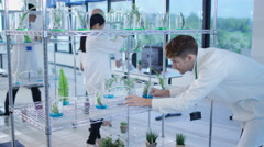 4K Group of chemists examining plant extracts in laboratory Stock Footage