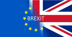 vector Great Britain referendum on secession from the European Union - stock illustration