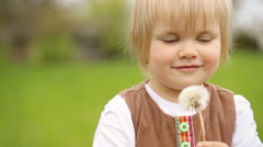 Cute child holding dandelion in her hands and playing with this flower Stock Footage