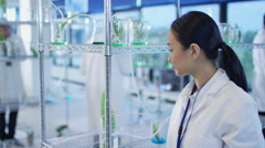 4K Group of chemists examining plant extracts in laboratory - stock footage