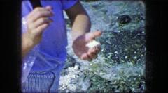 1944: Man hermit crab walking seashell person beach found captured animal. Stock Footage