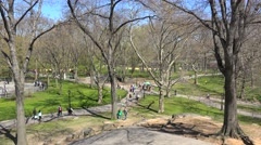 People in the NYC Central Park at the day off of spring. USA. - stock footage