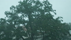 4k Windy tree by heavy rain thunderstorm street scene in german city Stock Footage