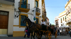 Horsecar and group of tourists passing by in small street Stock Footage