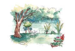 Watercolour painting of green lush backyard garden Stock Illustration