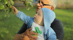 Grandfather showing grandson apple tree. Beautiful baby smiling and touching Stock Footage