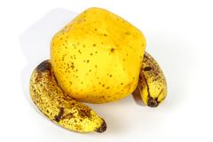 Yellow Paw Paw with Two Ripe Speckled Bananas - stock photo