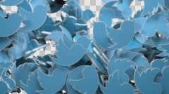 Falling twitter logo transition - stock footage