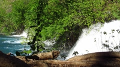 Waterfall in deep forest. Water falling into pond. Stock Footage