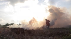 Balinese farmer is burning stubble in rice field near Ubud Bali  during sunset Stock Footage