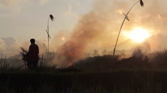 Silhouettes of farmer setting fire of straw stubble in Ubud Bali  during sunset Stock Footage