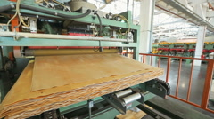 Equipment for manufacture of plywood Stock Footage