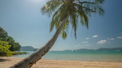 Sunny day palm tree beach panorama hd phuket island thailand Stock Footage