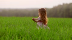 Little girl running cross the green field at sunset.Slow motion Stock Footage