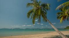 Summer day phuket famous beach palm tree panorama hd thailand Stock Footage