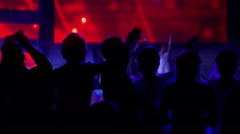 Crowds of People Having Fun on a Music Concert - stock footage