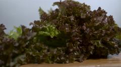 Dark lettuce leaf falling in slow motion onto a cutting board Stock Footage