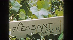 1956: A pleasant walk sign mother son hiking trail wooded forest bridge. Stock Footage