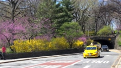 Road traffic at the 85th Transverse Street  near the NYC Central Park. Stock Footage