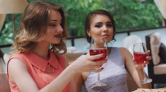 Celebration. Friends in the cafe clink wine glasses - stock footage