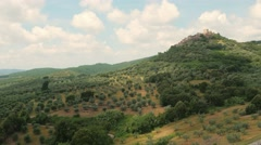 Aerial Drone shot of olive trees Stock Footage