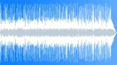 Slow Blues Resonator Slide Guitar Stock Music
