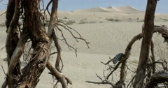 Mesquite Flat Sand Dunes, Death Valley National Park - stock footage