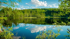 Forest lake in sunny summer day. Time laps Stock Footage