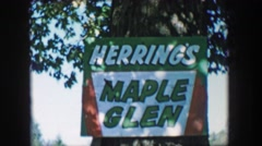 1957: Herring's Maple Glen sign historic old growth syrup tree orchard. - stock footage