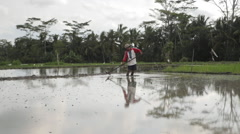 Balinese rice farmer levels wet soil with hand tool before planting paddy Stock Footage