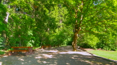 4K Park Bench with Canopy of Large Leaf Tree Foliage, Gravel Path, Spring Season - stock footage