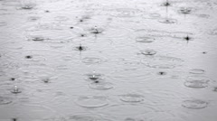 Persistent rain on the water surface with falling drops and blobs in slow motion Stock Footage