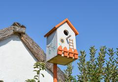 Birdhouses, houses for birds Kuvituskuvat