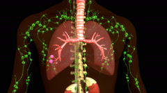 Granuloma in Lungs Stock Footage