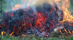 The dry grass in the field burns inflated by a wind - stock footage