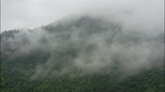 Timelapse of clouds over thick green forest in China. Stock Footage