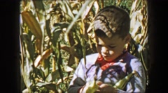 1957: Cute boy corn harvest peeling ears in family farm fields. Stock Footage