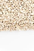 job's-tears of millet on white background - stock photo