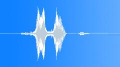 Man Voice Says Visit - sound effect
