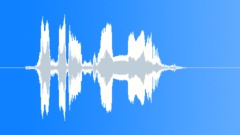 Visit Us Online Man Voice Sound Effect
