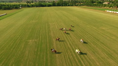 Polo challenge. Slight slow motion. N Aerial shot Stock Footage