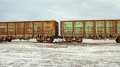 Old rusty train wagons with stalactites of salt at the lake Baskunchak Stock Footage